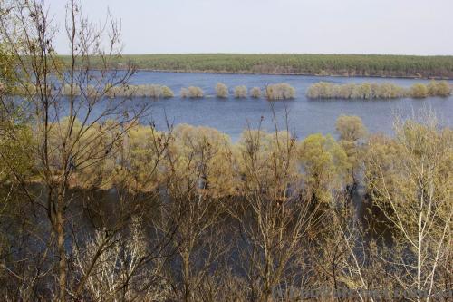 Мезинский национальный природный парк