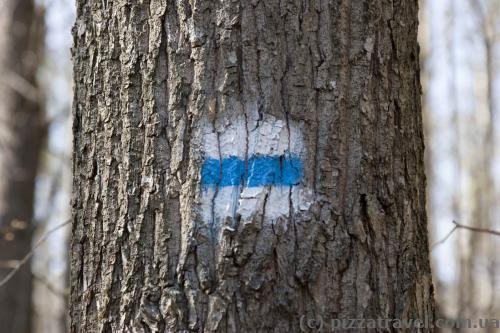 The ecotrails are marked with signs. If the color has changed, it means that the paint was over =)