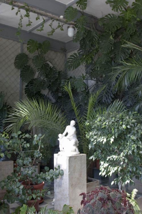 Winter garden in the Vorontsov Palace
