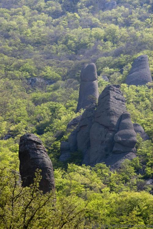 У этого камня название тоже, вероятно, грибочек или пальчик :)