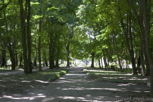 Парк около дома Кочубея