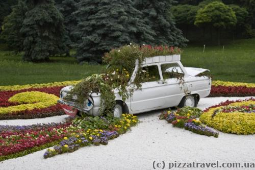Выставка цветов в Киеве (2013)