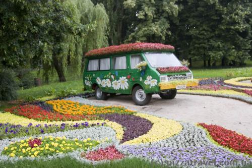 Виставка квітів у Києві (2013)