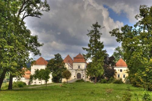 Замок Свірж